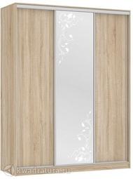 Шкаф-купе Бассо 1-600 цветы дуб сонома; дуб млечный; венге МС
