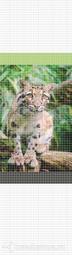 Стеновая панель ПВХ Оранда Леопард Мозаика