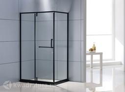 Душевая дверь ODA 8028 120*80 см